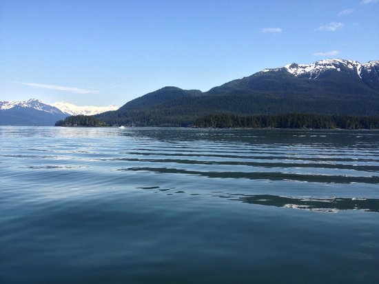 Harv and Marv's Outback Alaska: Whale Watching - Harv & Marv