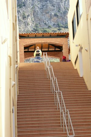Asterias Village Resort: The steps!