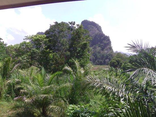 Khao Sok Valley Lodge : Khao Sok Good View