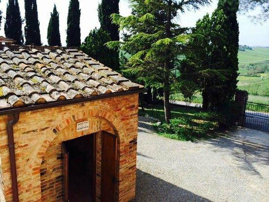 Casa Cecchi B&B : alrededores del hotel