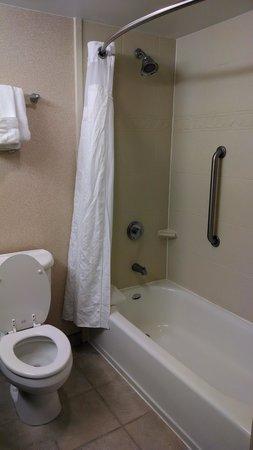 Holiday Inn Hotel & Suites Aggieland: Bath