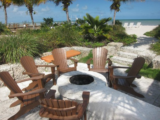 Ocean House : Fire Pit to enjoy in the evenings and look at the stars