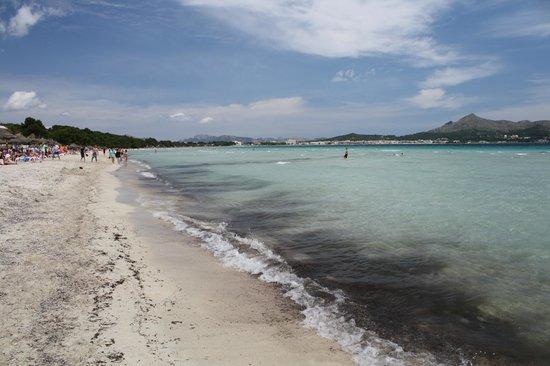 Hotel Condesa de la Bahia: The view from the beach outside the hotel