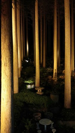Kirishima Hotel: 百年過ぎのライトアップ風景