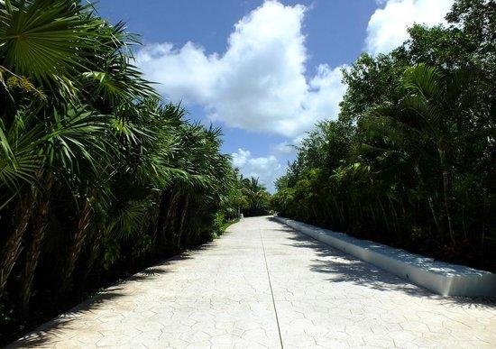 BlueBay Grand Esmeralda : Long, long walk ...