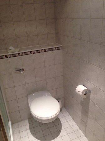 Holiday Inn Express Exeter: Toilet
