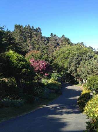 Stanford Inn by the Sea : Beautiful grounds