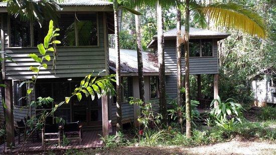 Ferntree Rainforest Lodge: garden lofts