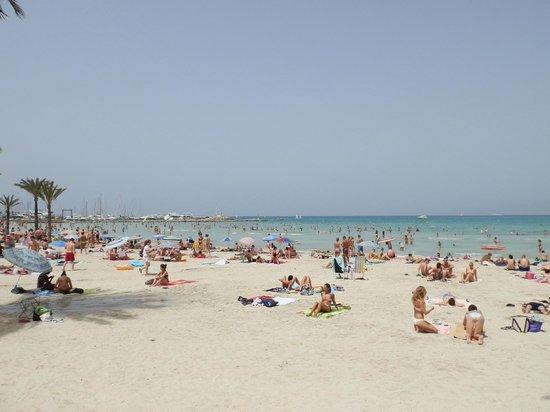 Hotel Palma Mazas: Arenal beach