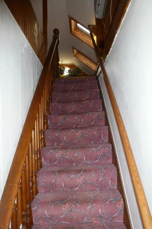 Cover Park Manor: stairs leading to whirlpool