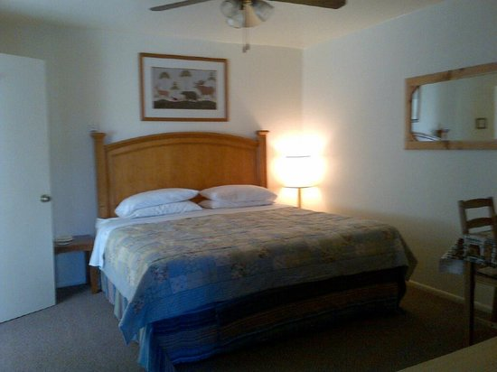 Buckskin Lodge : Suite 7 - upgraded to King Bed... this room is also ADA