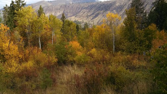 Bethel Ridge Retreat: View from Aspen View Lodge in the Fall