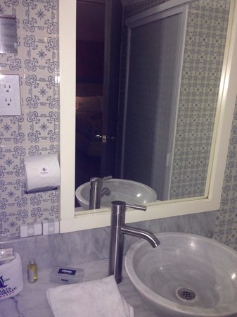 Hotel Plaza Garibaldi: Salle de bain