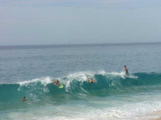 Solmar Resort: Surf competition, amazing