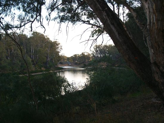 Moama on Murray Resort: The Murray from the resort
