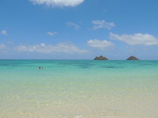 Lanikai Beach : The view from the beach
