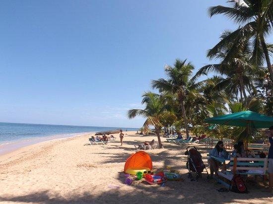 Hotel Residence Playa Colibri : Playa Las Ballenas