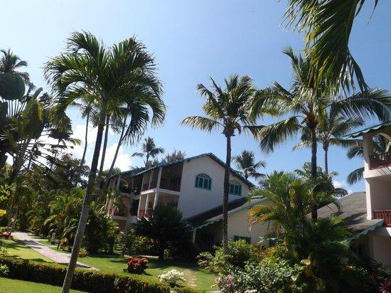 Hotel Residence Playa Colibri: Vista de los apartamentos