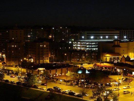 InterContinental Kansas City at the Plaza: View