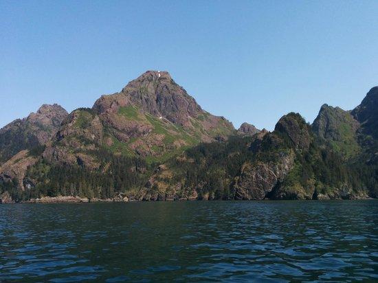 Crackerjack Sportfishing Charters : Resurrection Bay; scenic