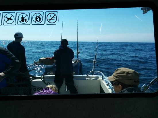 Crackerjack Sportfishing Charters : Fishing off the stern