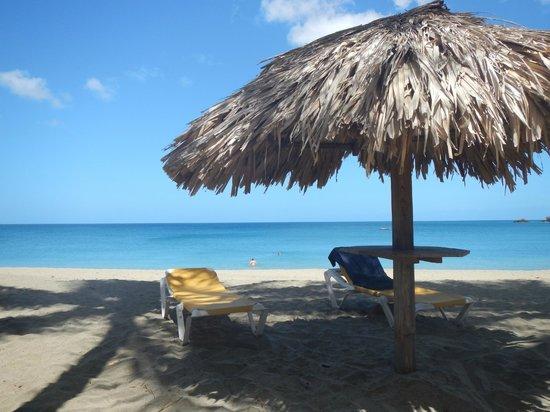 Turtle Beach by Rex Resorts: What a beach!