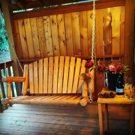Carson Ridge Luxury Cabins : Porch Swing