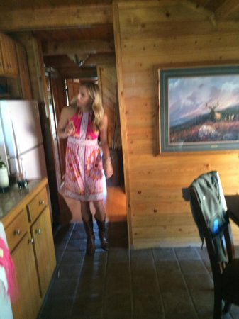Howlers Inn Bed & Breakfast and Wolf Sanctuary : Kitchen in 2 bedroom