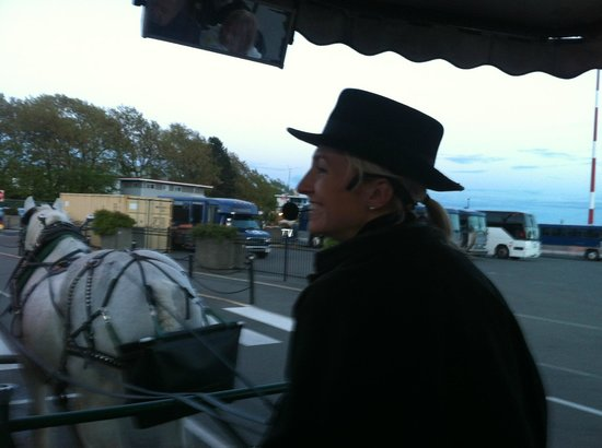 Victoria Carriage Tours: Our friendly driver on the tour