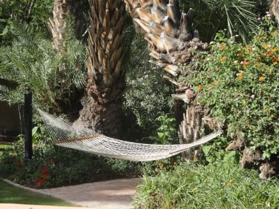Royal Palms Resort and Spa: A hammock! I wish I had tried it out.