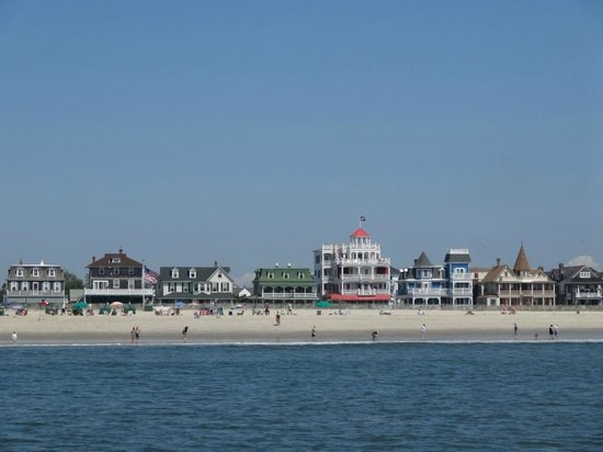 Thundercat Dolphin Watch: View of Cape May from the boat
