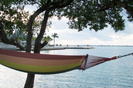 Seascape Motel and Marina: That hammock is calling to me