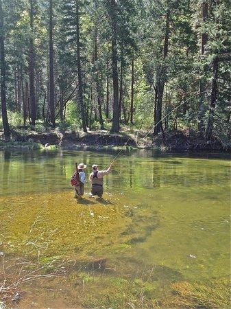 Yosemite Family Adventures - Day Tours: Yosemite fly fishing guide