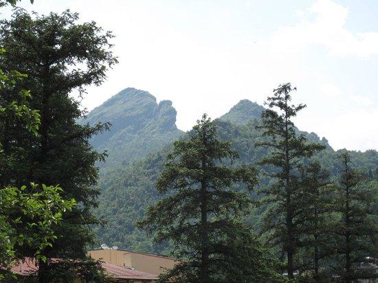 Sapa Elegance Hotel: Our wonderful view.