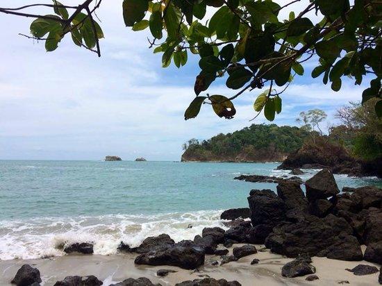 Hotel La Palapa Eco Lodge Resort: Costa Rica - Eco resort - Hotel La Palapa Ecolodge Resort