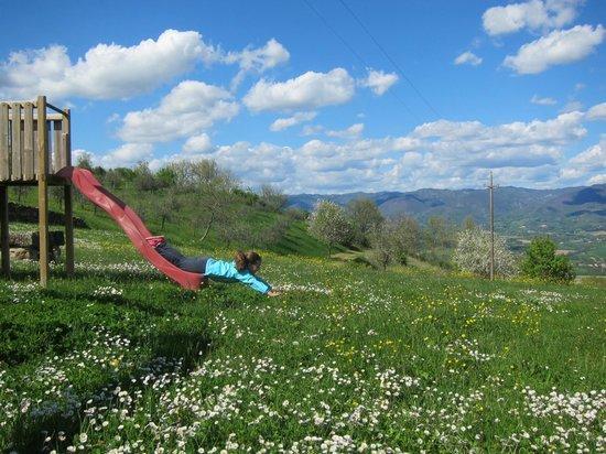 Villa Campestri Olive Oil Resort: Playground