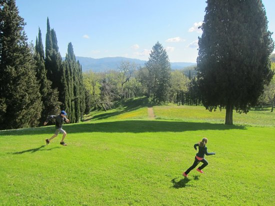 Villa Campestri Olive Oil Resort: Room to run