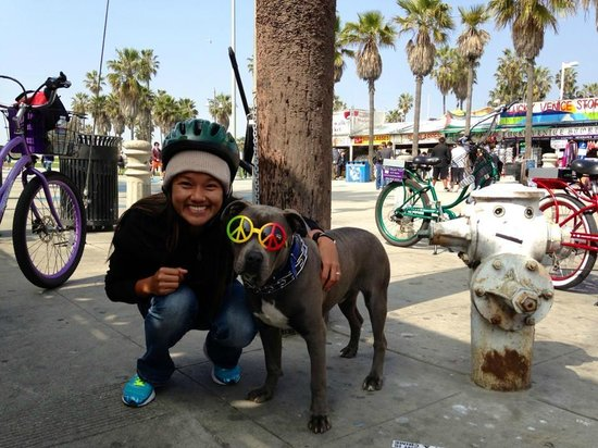 Pedal or Not... Electric Bicycle - Tours: Some of the characters you'll meet in Venice Beach