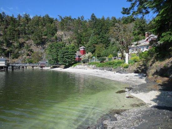 Poets Cove Resort & Spa: the cove