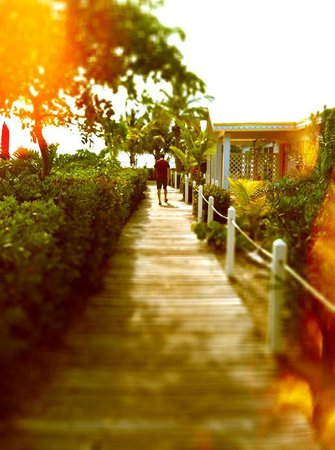 Hideaways at Palm Bay: Walkway to our cottage