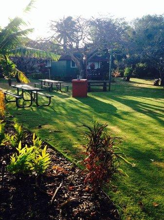 Nona Lani Cottages: Sunrise lighting up the beautiful grounds