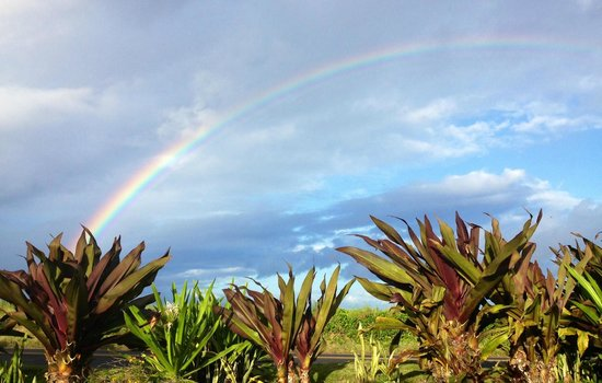 Nona Lani Cottages : Best rainbows ever