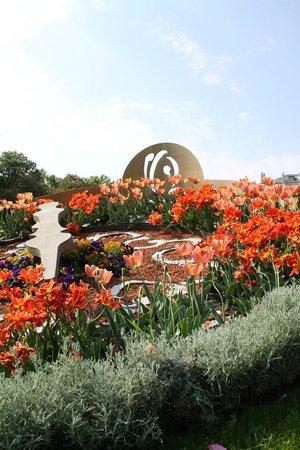 Stadtpark: Tulips in bloom