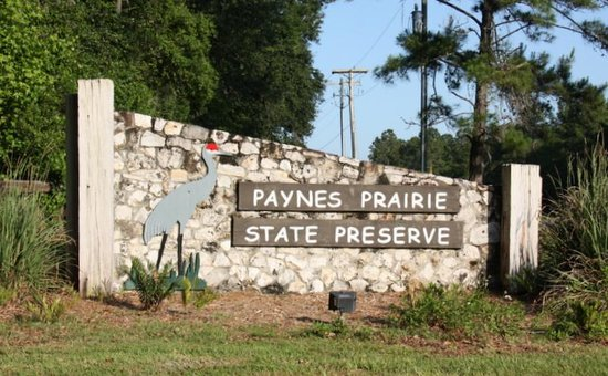 Paynes Prairie Preserve State Park: Front Park Entrance-Florida´s First State Preserve In 1971