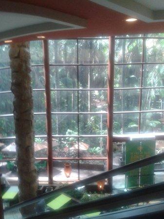 Manauara Shopping : Foto tirada da escada rolante