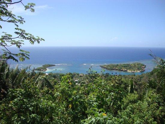Carambola Botanical Gardens & Trails : vista desde la cima...