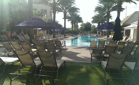 Gaylord Palms Resort & Convention Center: Adult Pool Area