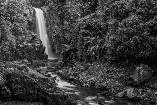 Peace Lodge: Waterfall on site