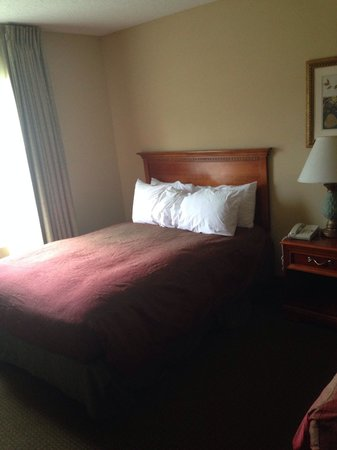 Homewood Suites Tallahassee: Horrible bedding