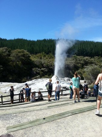 Wai-O-Tapu Thermal Wonderland: A brief stop at Lady Knox before heading to the park.